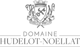 Billede til producenten Domaine Hudelot-Noëllat