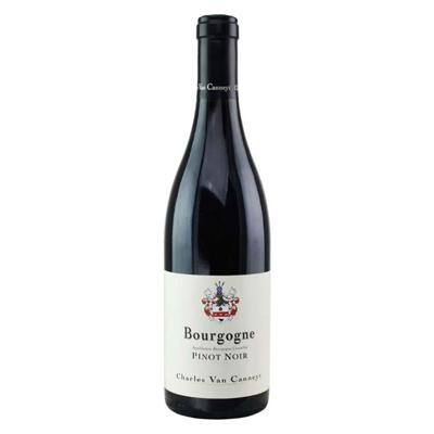 Charles Van Canneyt Bourgogne Pinot Noir 2019